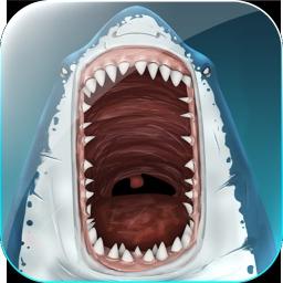 Gefährlicher Hai-Byte