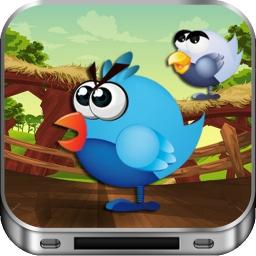 Vogel-Kämpfer