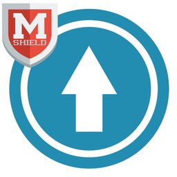 mShield Memory Boost