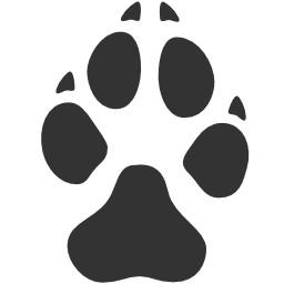 Hund Pfoten Abdruck