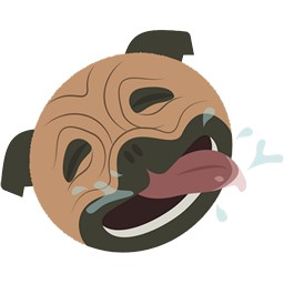 Hund Mops Gesicht