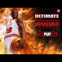 Ultimate Swish Basket Ball