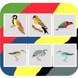 Bird Guess