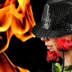 Fire Rose Flower