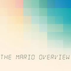 The Mario Overview