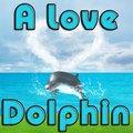 A Love Dolphin