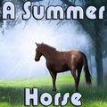 Un cavallo estivo