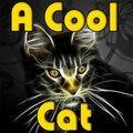 Eine coole Katze