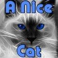 Eine Nette Katze