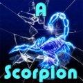 Ein Skorpion