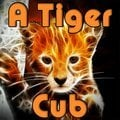Un jeune tigre