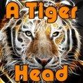 Une tête de tigre
