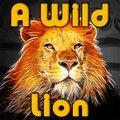 Un lion sauvage