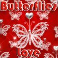 Butterflies Love