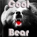 Cooler Bär