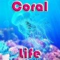 Korallen Leben