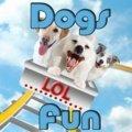 Hunde Spaß