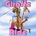 Giraffenritt