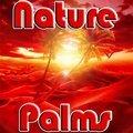 Nature Palmen