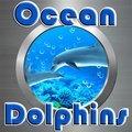 Dauphins d'océan