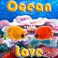Amour de l'océan