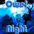 Eulennacht