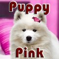Hündchen Pink
