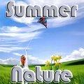 Sommer Natur