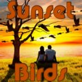 Sunset Birds