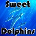 Sweet Dolphins