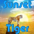 Sunset Tiger